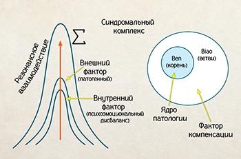 Возникновение синдромального комплекса